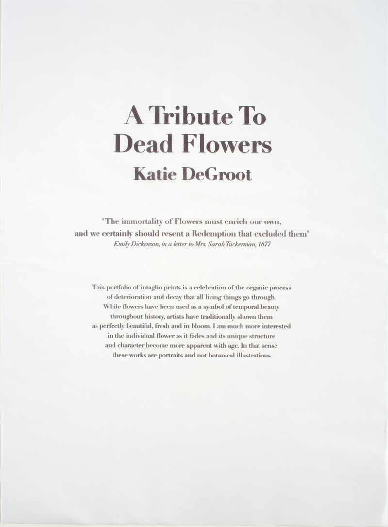 A Tribute to Dead Flowers